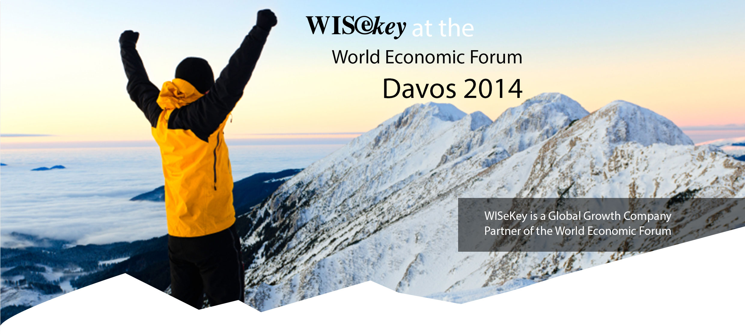 WEF Davos 2014 Round table